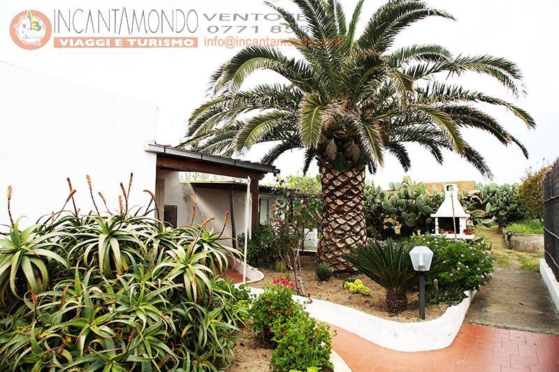 Casa Vacanza Palma - (133)
